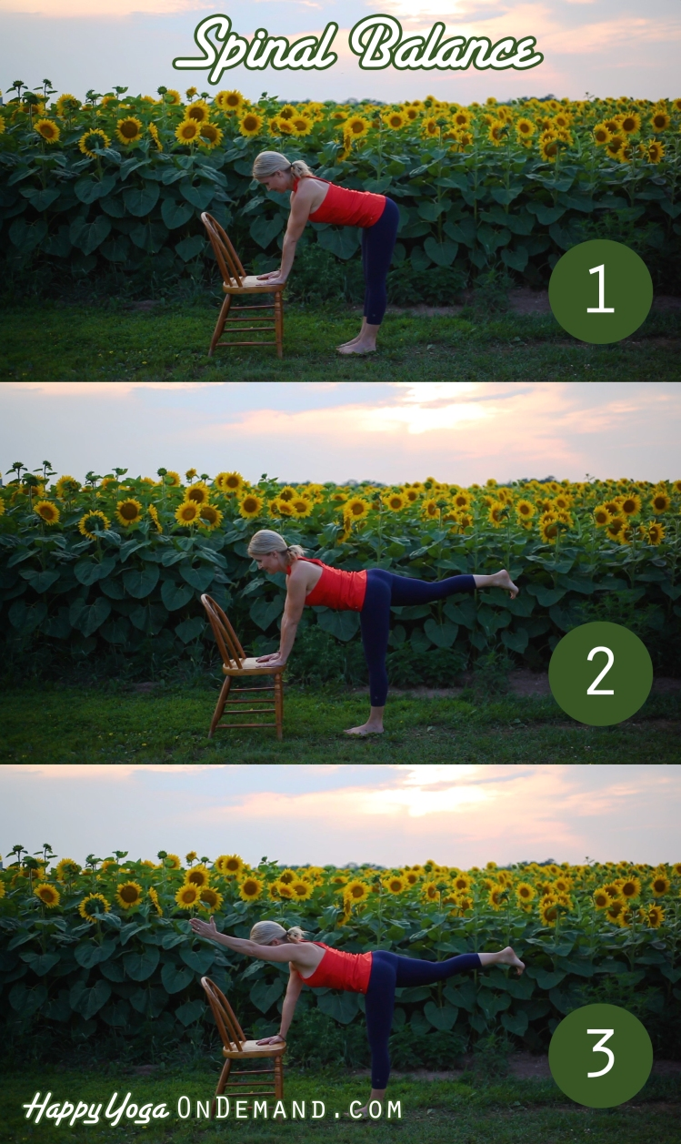 Spinal Balance_Sequence